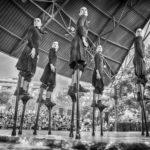 Las mejores fotografías de las Fiestas Patronales de Petrer en el Forn Cultural