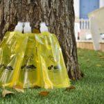 Sanitat repartirà botelles omplibles per als orins d'animals, en la romeria de Sant Antoni