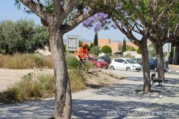 La concejalía de Servicios Generales acomete el desbroce de maleza en 180.898 m2 de solares municipales, cunetas y laterales de caminos urbanos