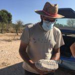 Conclouen les excavacions arqueològiques en l'alqueria de Puça amb importants troballes